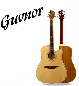 Guvnor guitar distribution Portugal